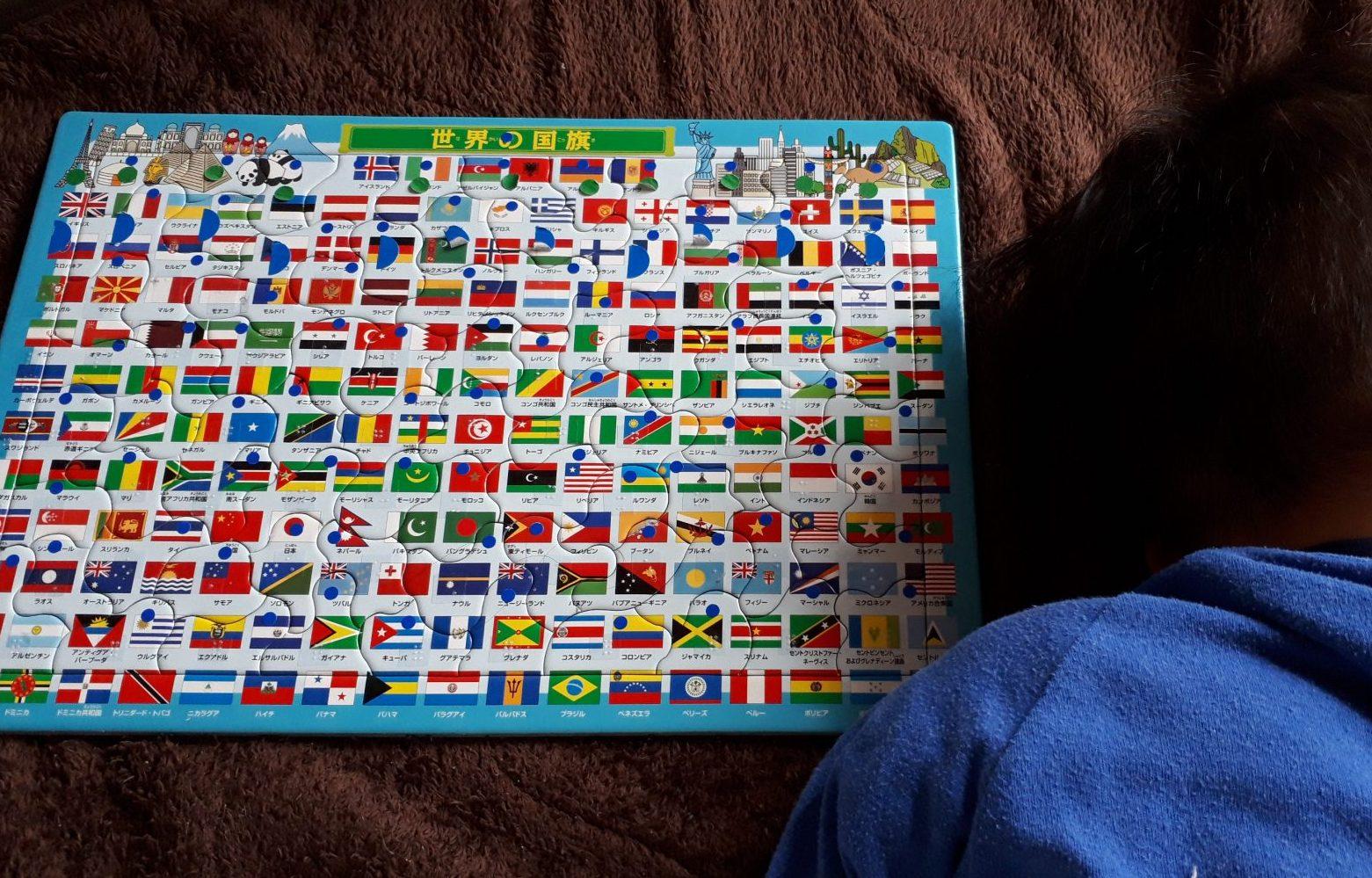 パズルの横で眠るかずぼーの画像